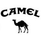cp4 camel